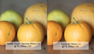Canon vs. Pentax 50mm Comparison