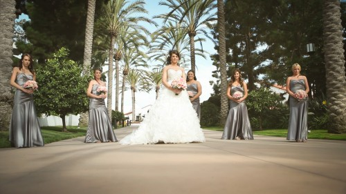 Bride and brides maids palm tree