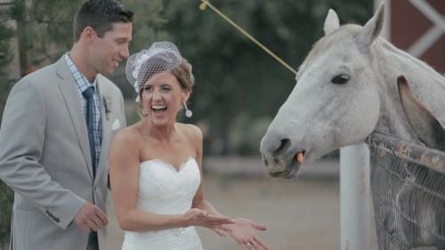 Bride feeding horse