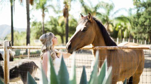 Bride and horse at ranch wedding